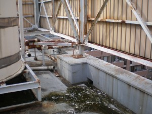 ハト糞被害 高架水槽周辺